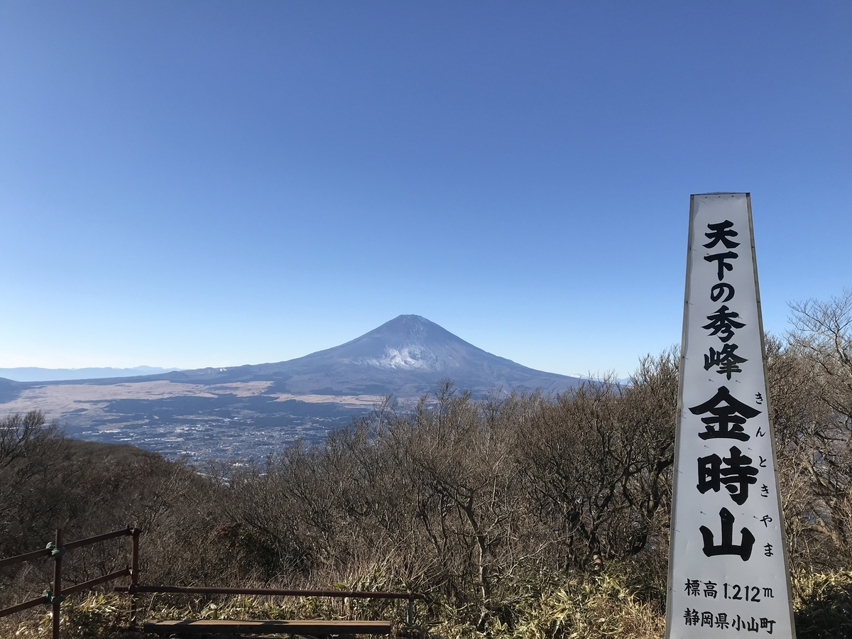 f:id:tanoraku:20201223165716j:plain