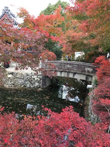 f:id:tanoshiirougo:20181124070308j:image