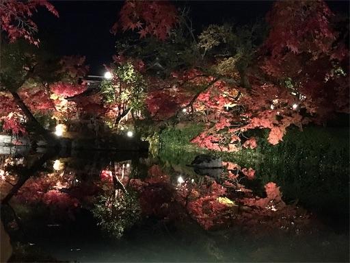 f:id:tanoshiirougo:20181124225146j:image