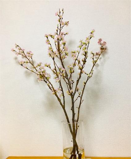 f:id:tanoshiirougo:20190225131655j:image