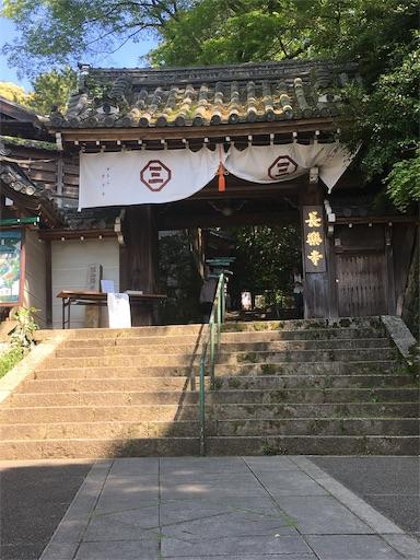 f:id:tanoshiirougo:20190513124650j:image