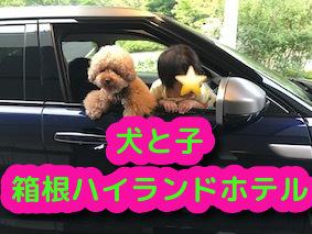 f:id:tanoshimu326:20190827222852j:plain
