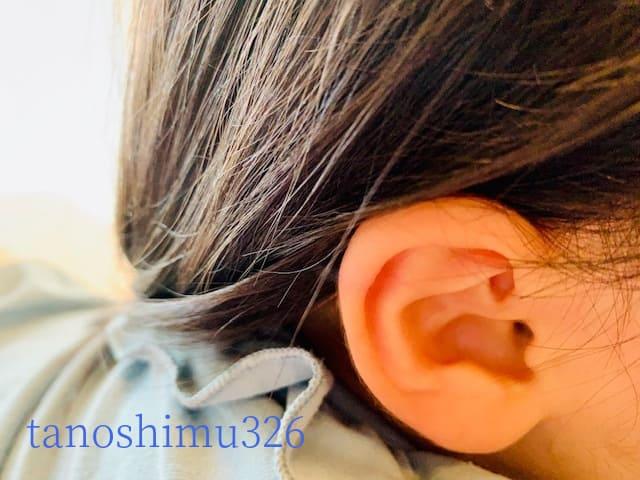 f:id:tanoshimu326:20200227154512j:plain
