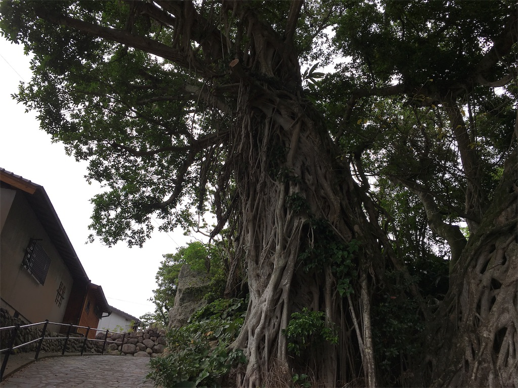 f:id:tanosinakama:20170725192445j:image