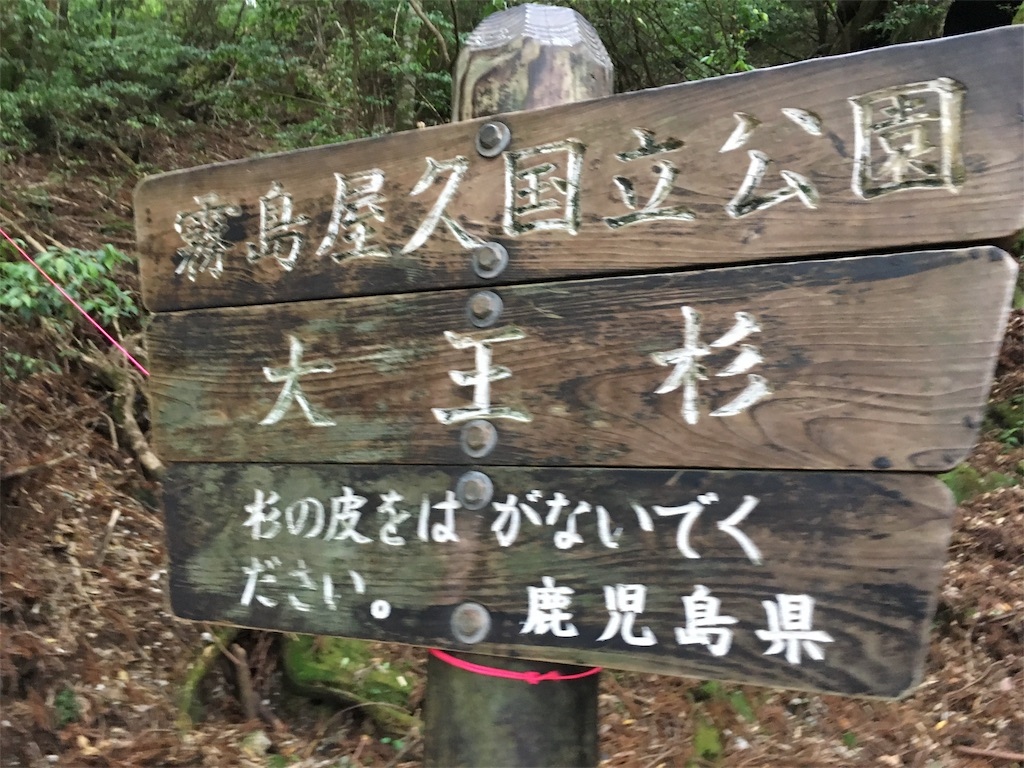 f:id:tanosinakama:20170726211816j:image
