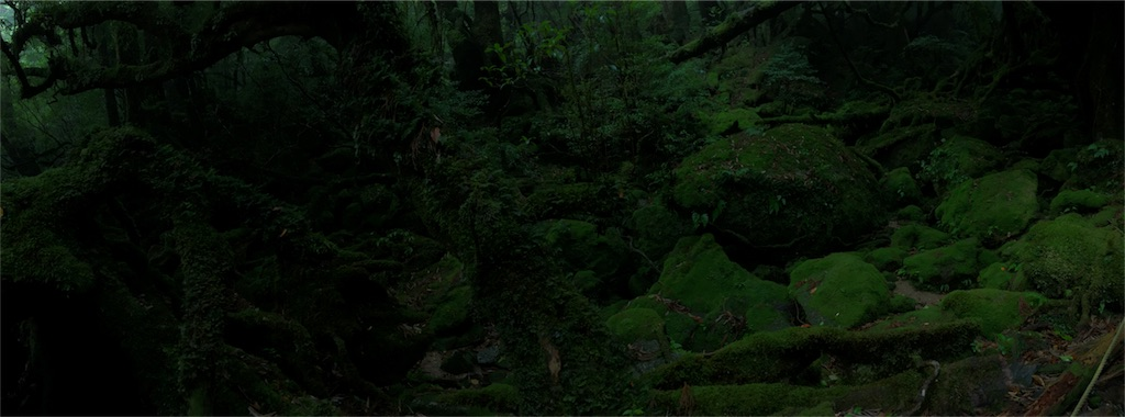 f:id:tanosinakama:20170727211003j:image