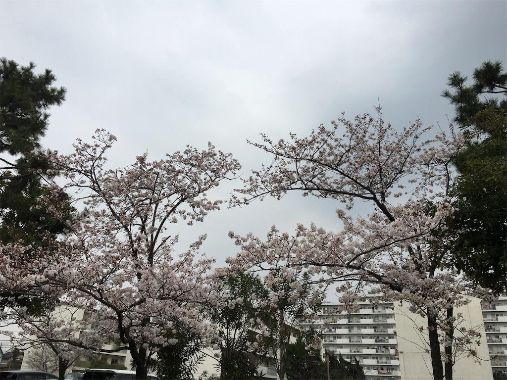 f:id:tanosinakama:20180327194954j:image