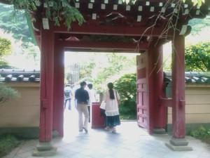 f:id:tanshinblog:20090530145628j:image