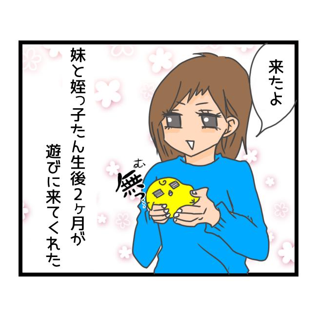 f:id:tansio-karubi:20210421192840p:plain