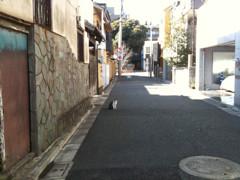 f:id:tanu_ki:20100131085607j:image