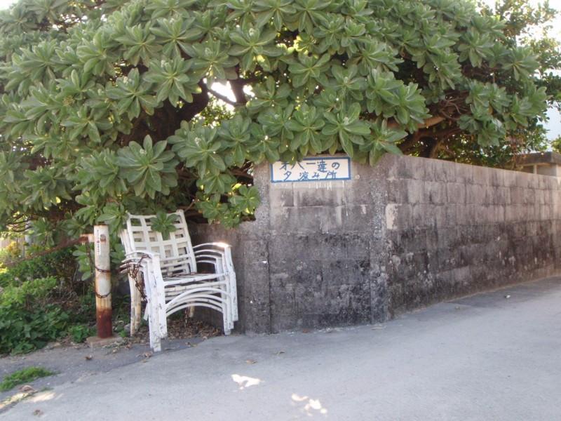 f:id:tanu_ki:20110225160003j:image:w360