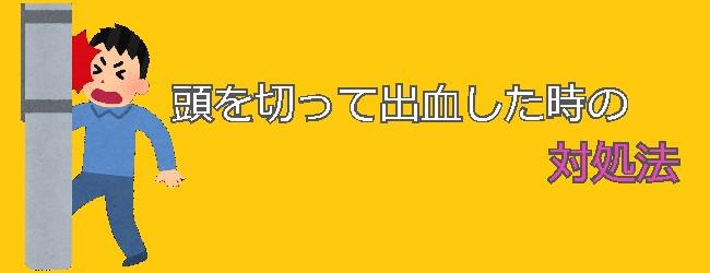 f:id:tanuki1221:20190714223505j:plain
