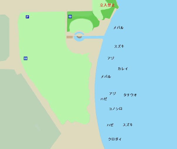 f:id:tanukifureiyu:20210429224806j:plain