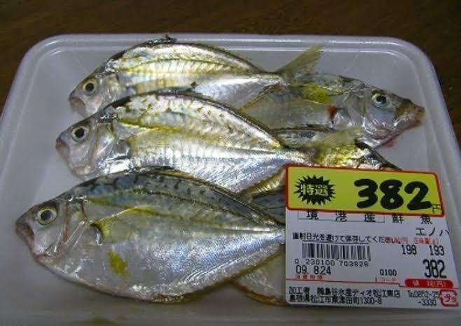 f:id:tanukifureiyu:20210620220737j:plain