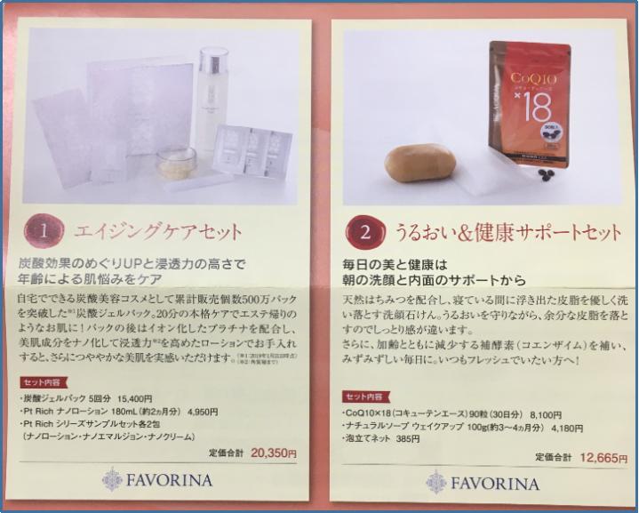 f:id:tanukitikun-x:20191223210605p:plain