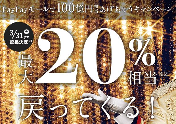 f:id:tanukitikun-x:20200208133409p:plain