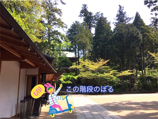 f:id:taoyaka2:20190428215312j:plain