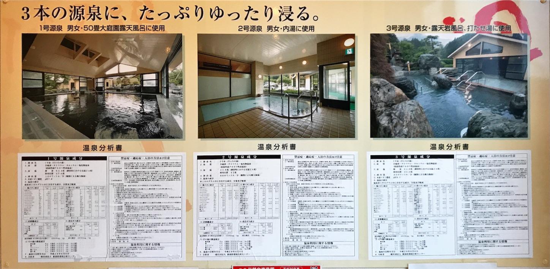 f:id:tapiokasan1090:20181228233502j:image