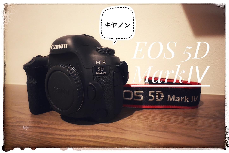 f:id:tapiokasan1090:20190120180920j:image