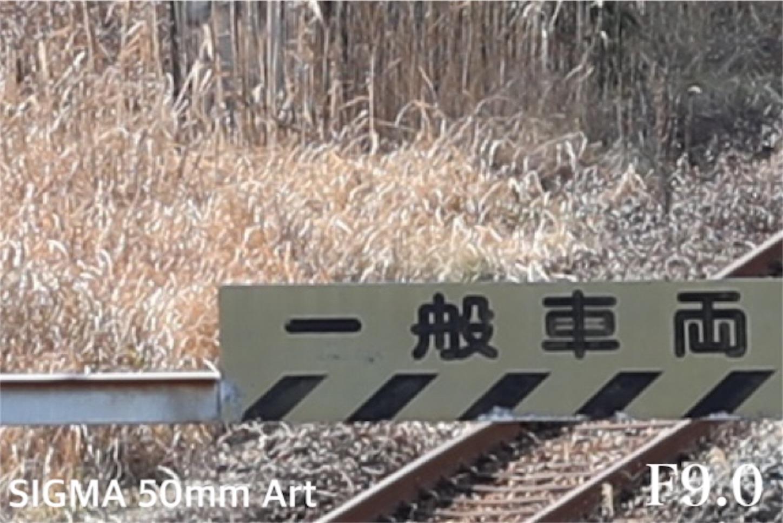 f:id:tapiokasan1090:20190122215320j:image