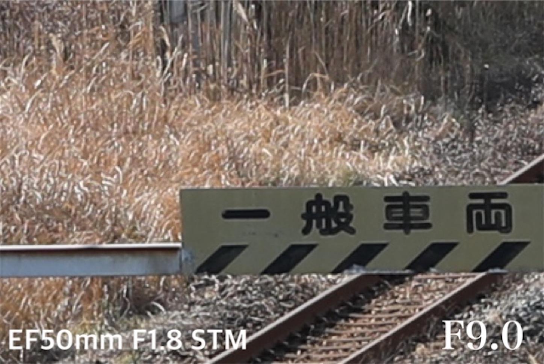f:id:tapiokasan1090:20190122215405j:image