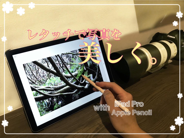 f:id:tapiokasan1090:20190201201914j:image