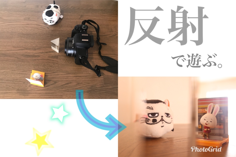 f:id:tapiokasan1090:20190214142009j:image