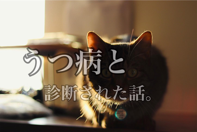 f:id:tapiokasan1090:20190218111014j:image