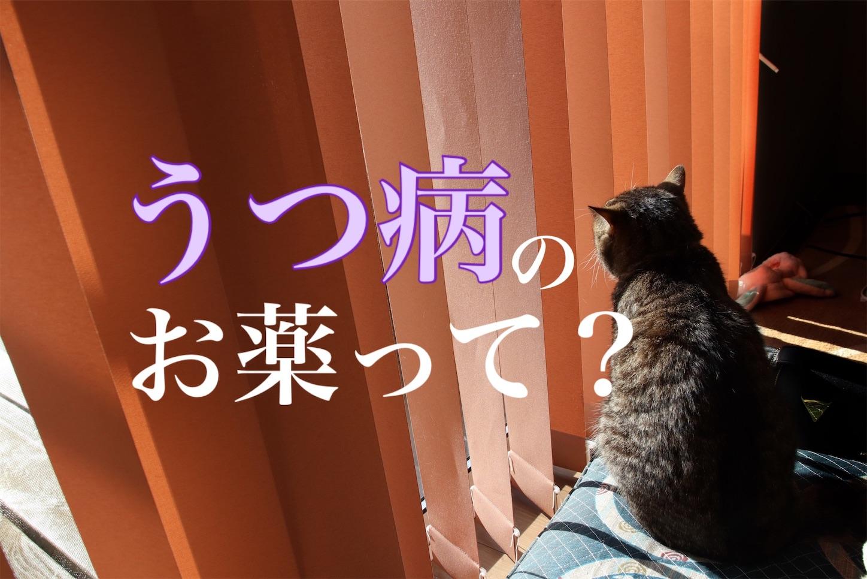 f:id:tapiokasan1090:20190225232230j:image