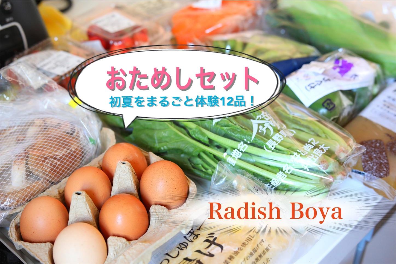f:id:tapiokasan1090:20190710131021j:image
