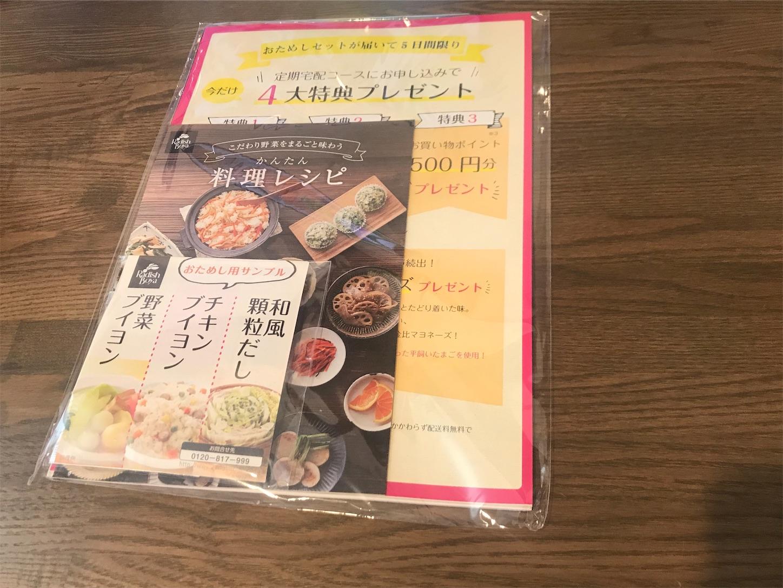 f:id:tapiokasan1090:20190710131904j:image