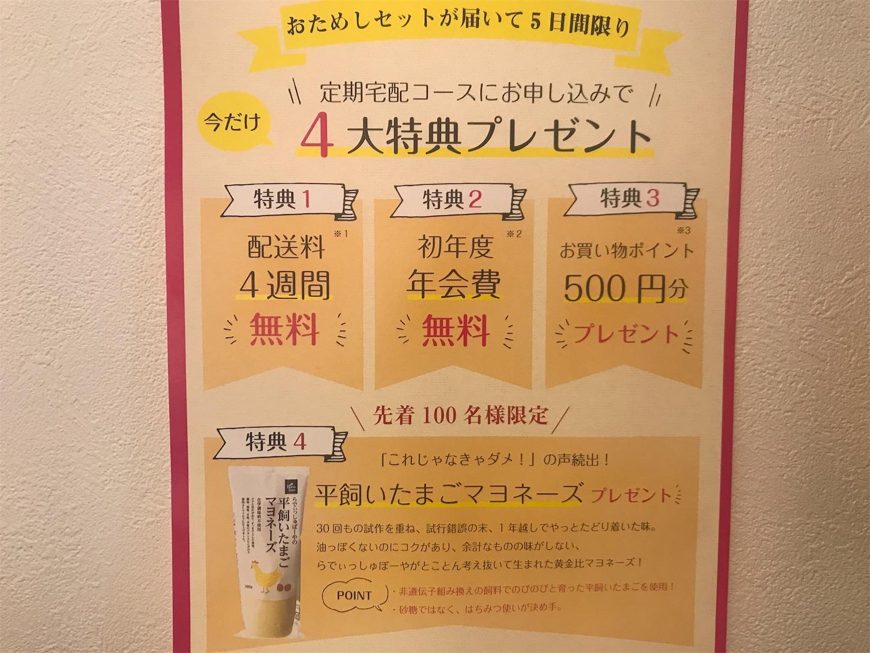 f:id:tapiokasan1090:20190710131925j:image