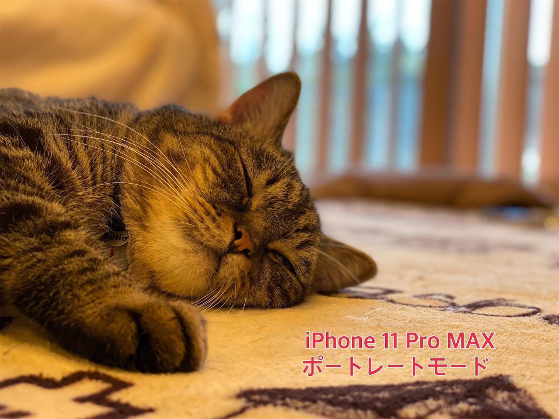 f:id:tapiokasan1090:20190926011323j:image