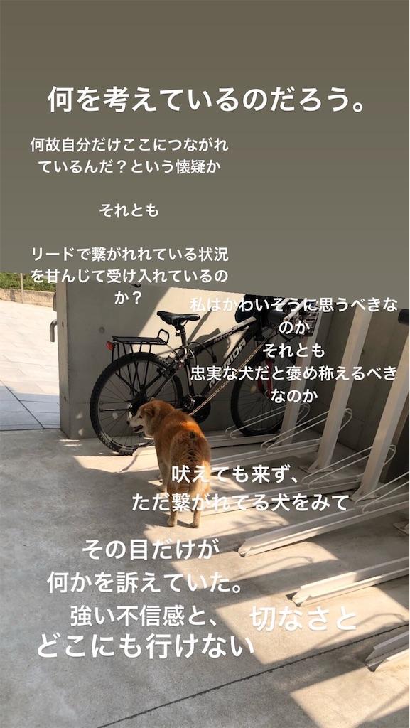 f:id:tapiokasukine:20190409211539j:image