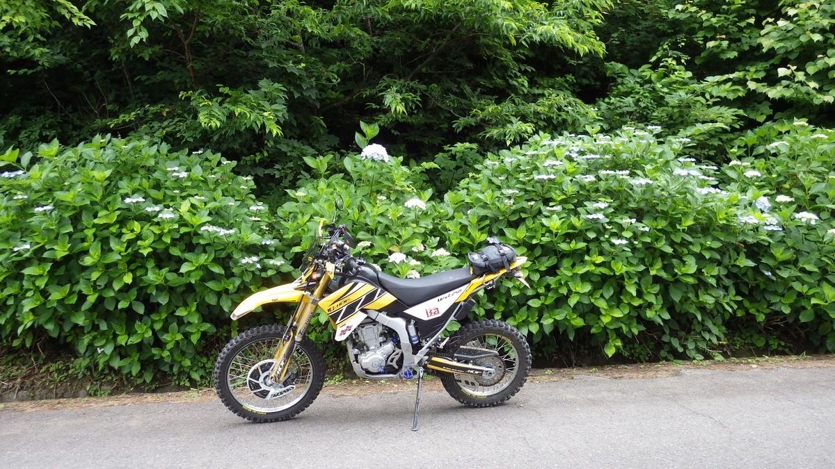 f:id:tara-bike:20200703212843j:plain