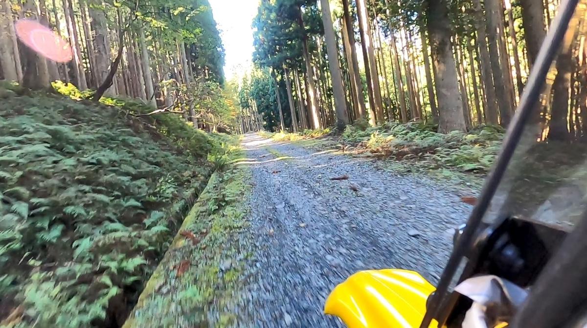 f:id:tara-bike:20201107182409j:plain