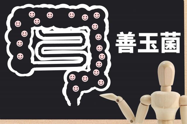 f:id:tarao-fuguta:20210813194910j:plain