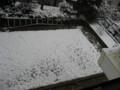 2011.2.11庭に雪が積もった