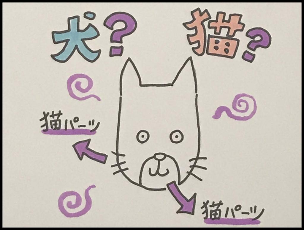 f:id:taro-x:20170514152033j:plain