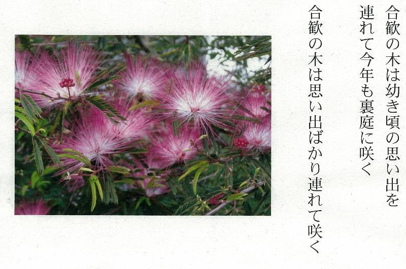 f:id:taro410:20130424104906j:image:w640