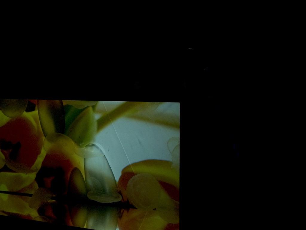 f:id:taroandjiro:20151120193518j:image