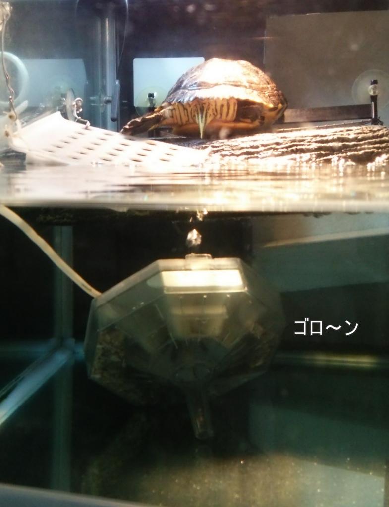 f:id:tarojiroko:20170209090511j:plain
