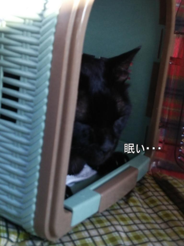 f:id:tarojiroko:20170803173412j:plain