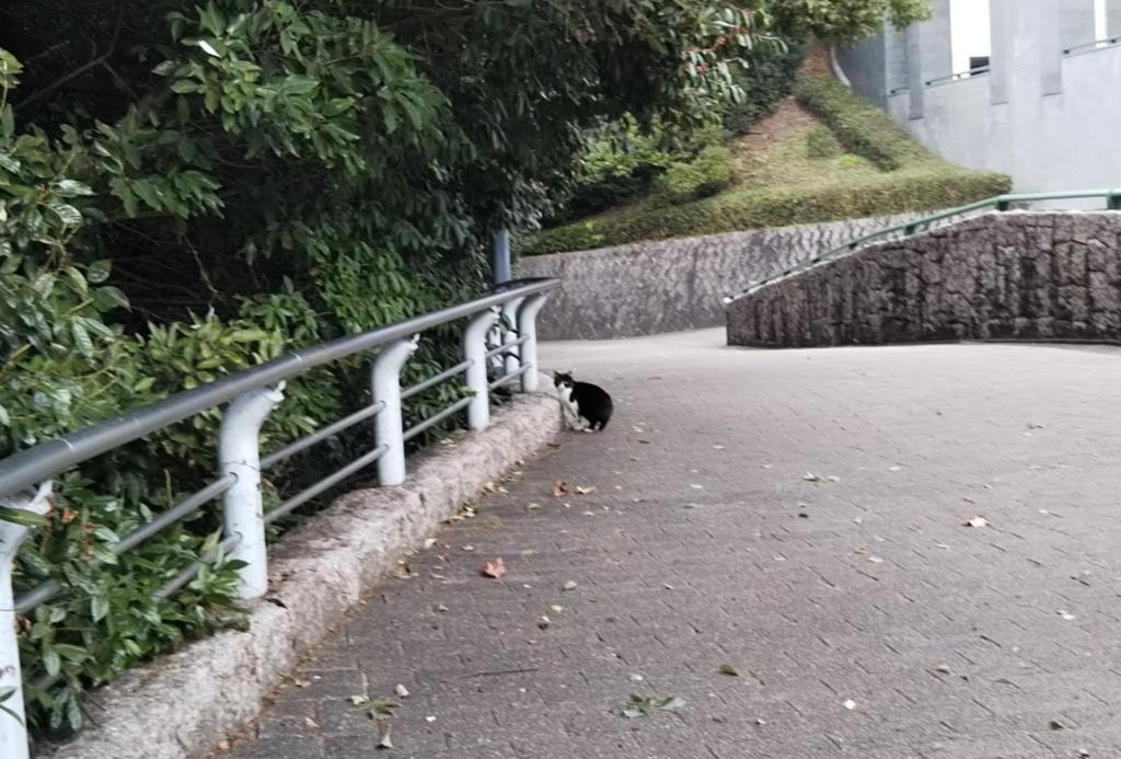 f:id:tarojiroko:20171229120637j:plain