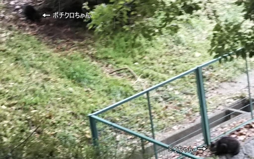 f:id:tarojiroko:20180128100257j:plain