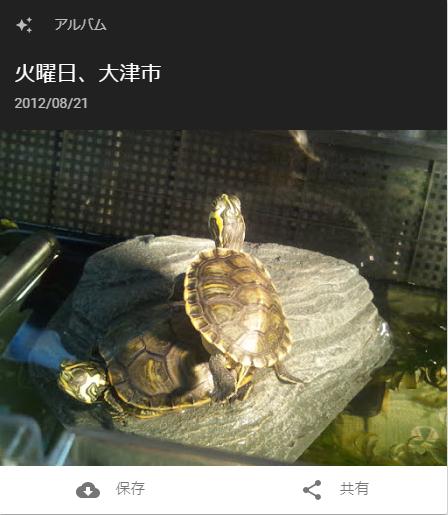 f:id:tarojiroko:20180208165326p:plain