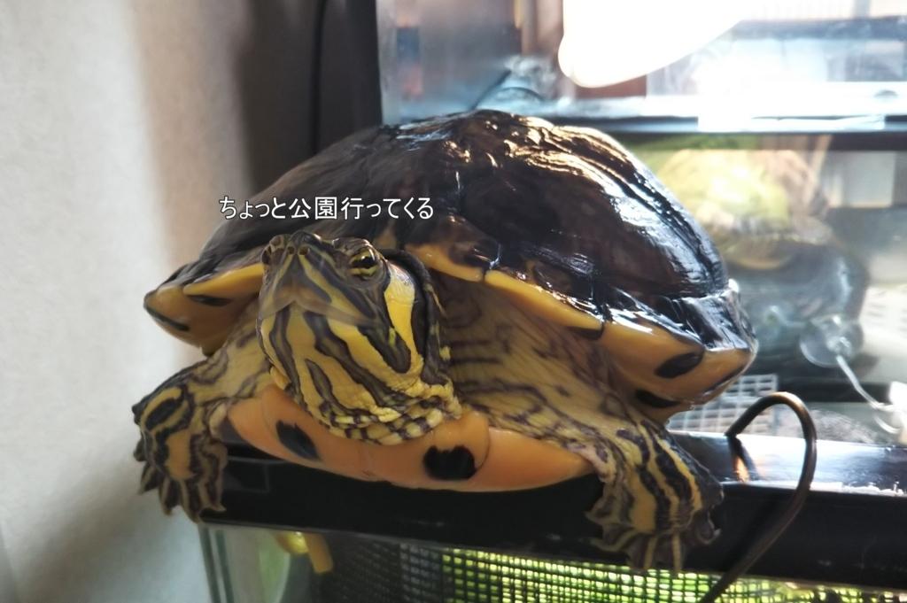 f:id:tarojiroko:20180502104333j:plain