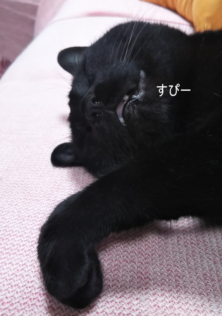 f:id:tarojiroko:20190424182426j:plain