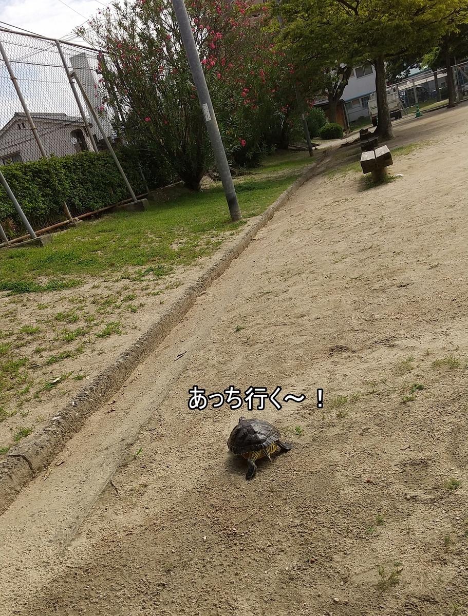 f:id:tarojiroko:20210628093434j:plain