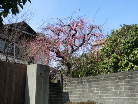 f:id:taron:20120229125936j:image